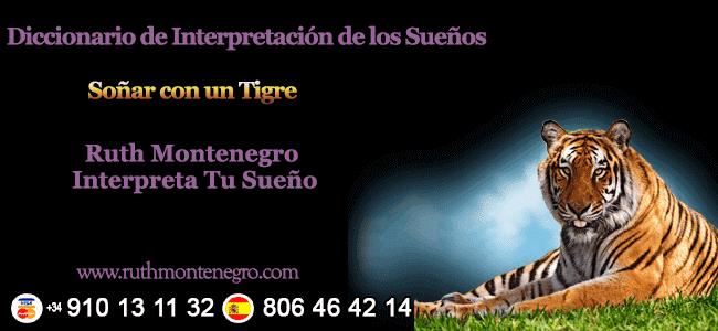 Soñar con un Tigre, su significado